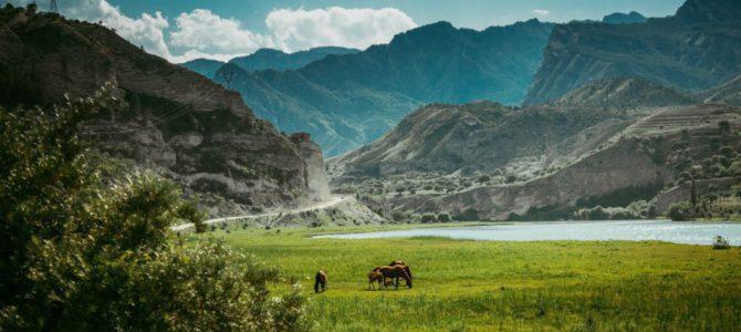 Культурно-деловая миссия в Республику Дагестан